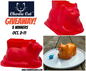 Charlie Cat Giveaway-2